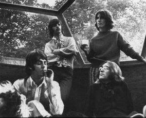 Beatle Bone.jpg